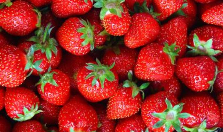 Strawberries | grubmarket.com